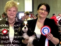 96th International Dog-Show Luxemburg